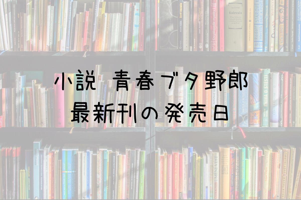 小説 青ブタ 12巻 発売日